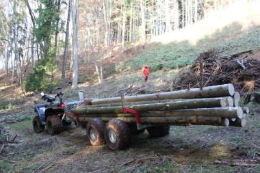 Přívěs Dřevař